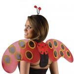 Marienkäfer-Flügel mit Haarreif Für Erwachsene